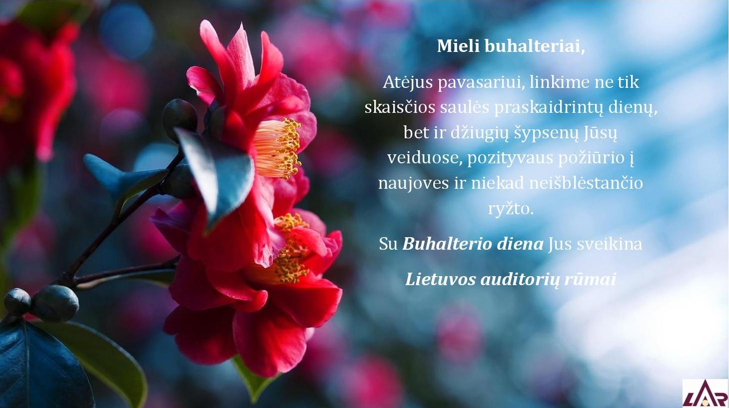 sveikinimas_buhalterio_diena_2016.png